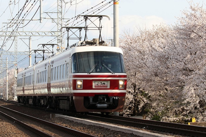 南海電車_c0385854_17370786.jpg