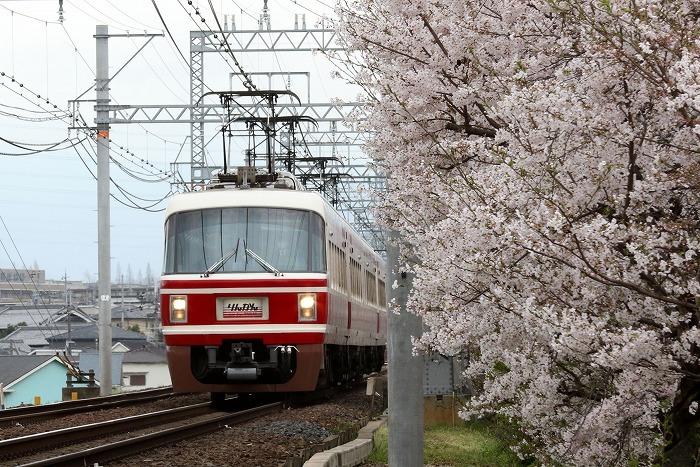 南海電車_c0385854_17371695.jpg