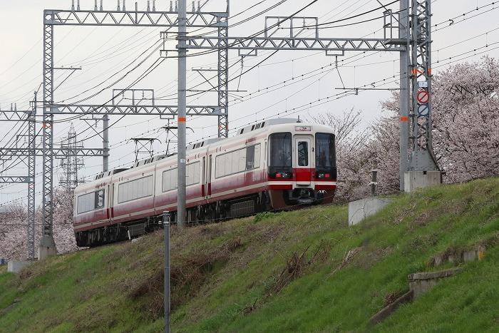 南海電車_c0385854_17372360.jpg