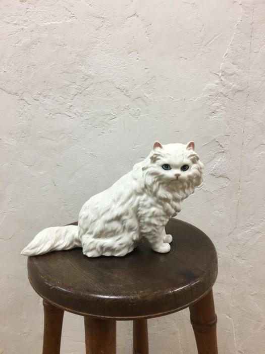 ペルシャ猫_f0196455_17120923.jpeg