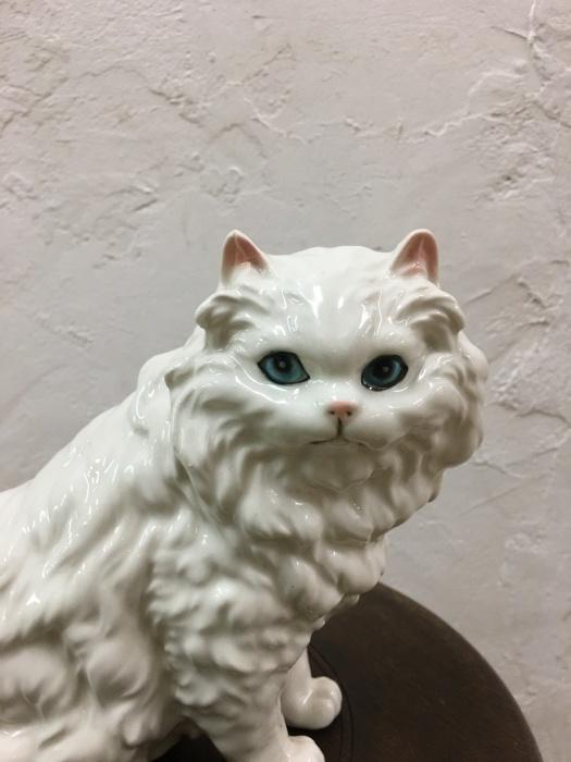 ペルシャ猫_f0196455_17130459.jpeg
