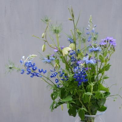 オークリーフ(青色や白色の草花たち)_f0049672_12530223.jpg