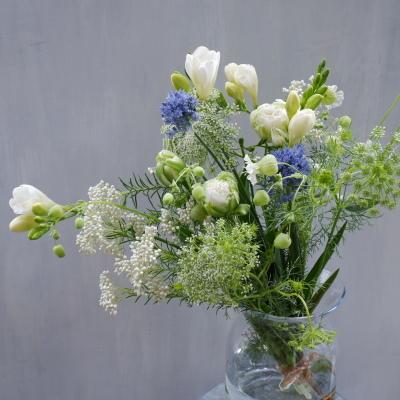 オークリーフ(青色や白色の草花たち)_f0049672_12530577.jpg