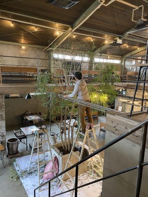 cafe Soco リニューアルオープン!_b0239082_21410948.jpg