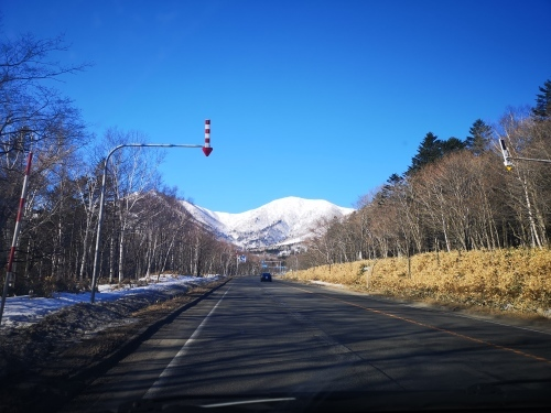 BCスキー ペケレベツ岳_d0198793_17274138.jpg
