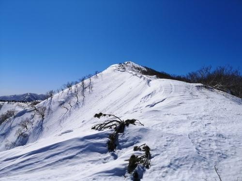 BCスキー ペケレベツ岳_d0198793_17575842.jpg