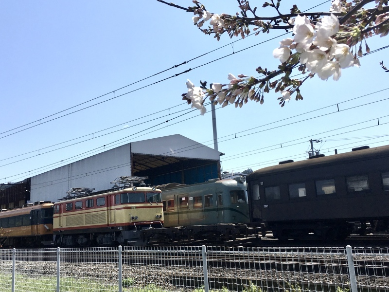 大井川鐵道の車両を眺めながら。_d0367998_16593087.jpeg