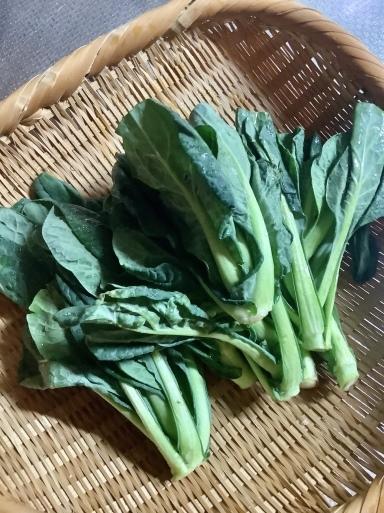 春の野菜がおいしい🥬_b0210699_00271115.jpeg