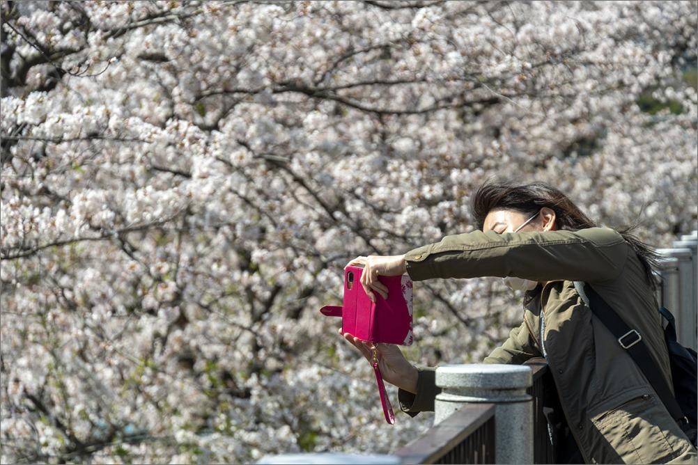 街は静かに…  4月2日(木) 6870_b0069507_01274057.jpg