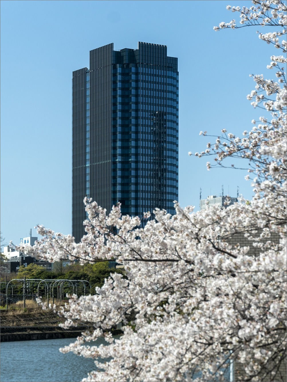 街は静かに…  4月2日(木) 6870_b0069507_01274071.jpg