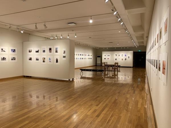 東川町文化ギャラリーで開催中の写真展_b0187229_18223454.jpg