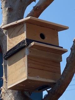 bird house 第二段_d0181439_10122655.jpg