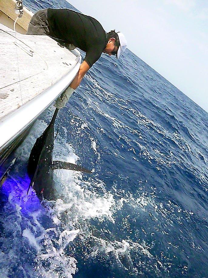 BZ艇さん沖縄でもう7本獲りました_f0009039_13421591.jpg