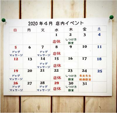 今月の予定表_a0223356_19232484.jpg