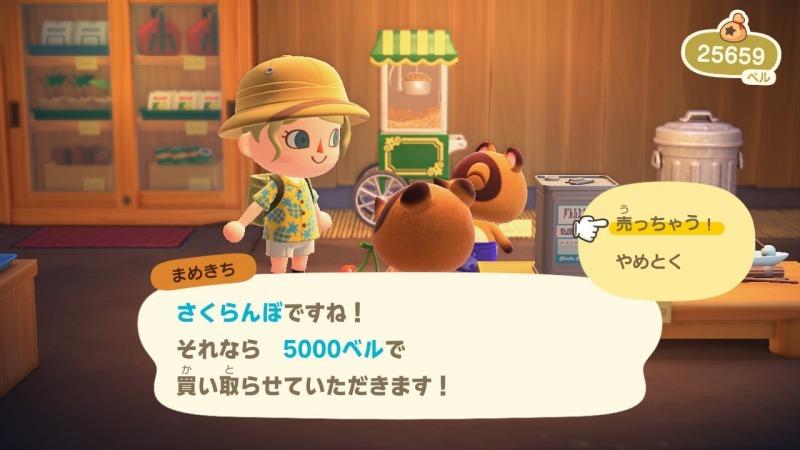 ゲーム「あつまれどうぶつの森 ナタリーが可愛い」_b0362459_14280520.jpg
