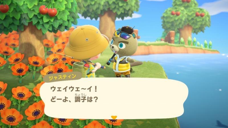 ゲーム「あつまれどうぶつの森 ナタリーが可愛い」_b0362459_14461318.jpg