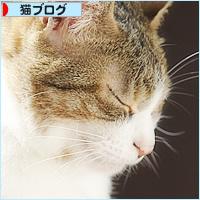 猫の意地_a0389088_04120731.jpg