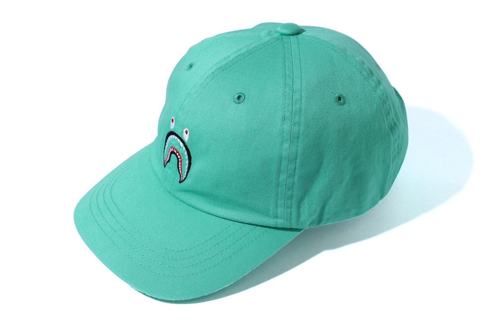 SHARK PANEL CAP_a0174495_16381311.jpg