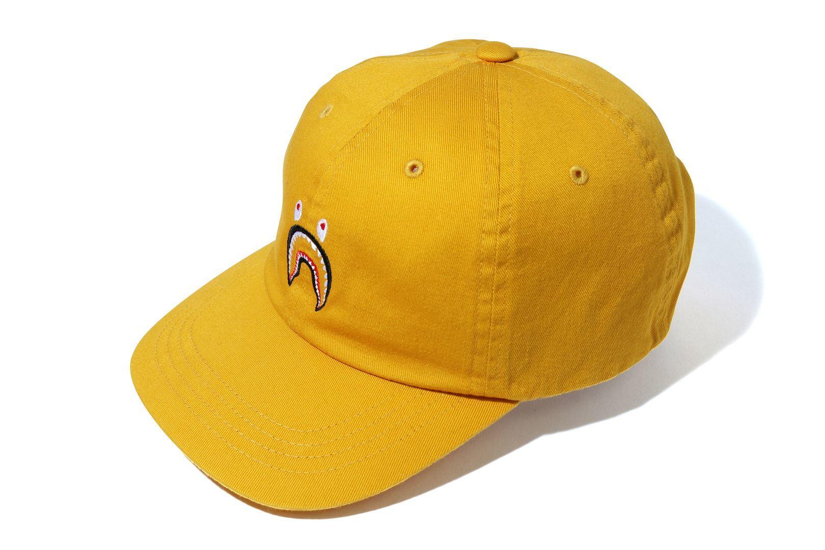 SHARK PANEL CAP_a0174495_16384840.jpg