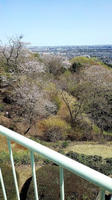 ■散歩【愛川町 八菅山迄のウォーキング】_b0033423_01192519.jpg