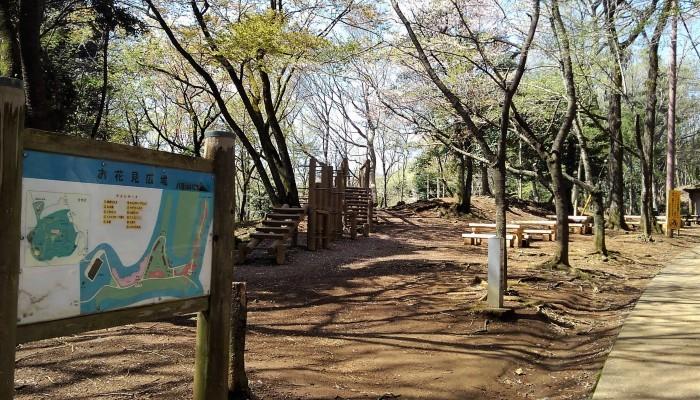 ■散歩【愛川町 八菅山迄のウォーキング】_b0033423_01210740.jpg