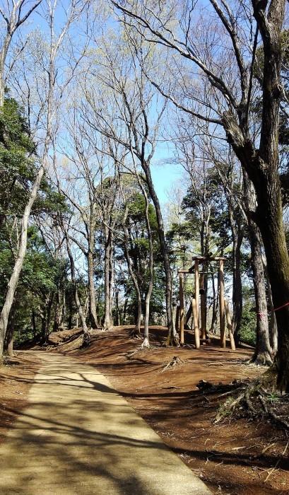 ■散歩【愛川町 八菅山迄のウォーキング】_b0033423_01283483.jpg