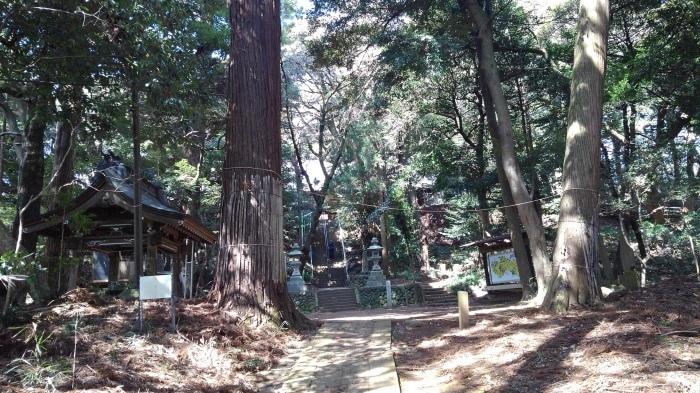 ■散歩【愛川町 八菅山迄のウォーキング】_b0033423_01345470.jpg