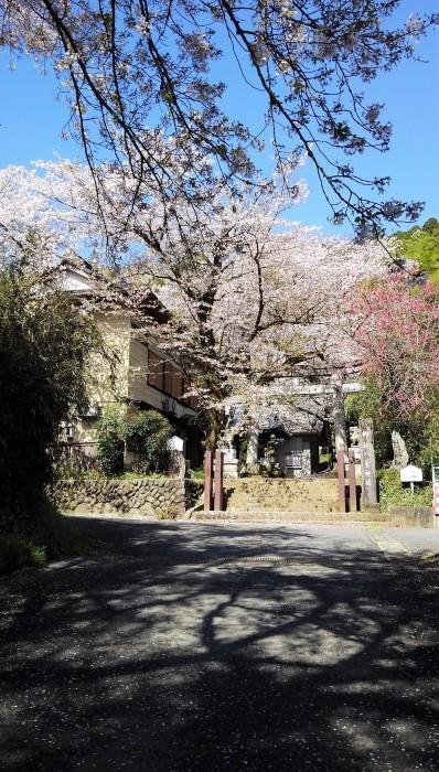 ■散歩【愛川町 八菅山迄のウォーキング】_b0033423_01582624.jpg