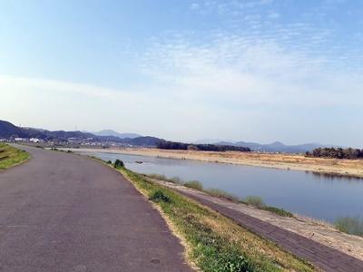 早朝 桜ウォーキング_f0129726_20394520.jpg
