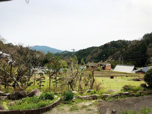 もめん澄~~カフェ桃_e0292546_04513650.jpg