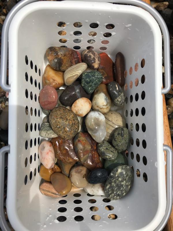 【海で拾った石】 2020年石拾い始め_f0169147_16451875.jpg