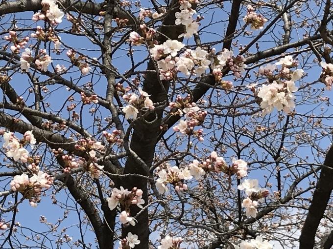 県の森公園_f0303858_19521712.jpeg