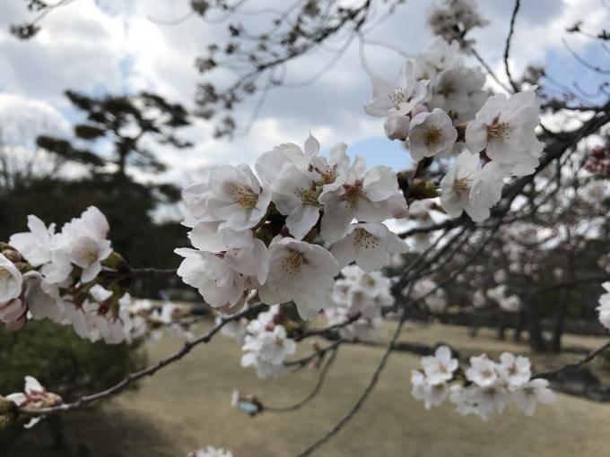 県の森公園_f0303858_19523479.jpeg
