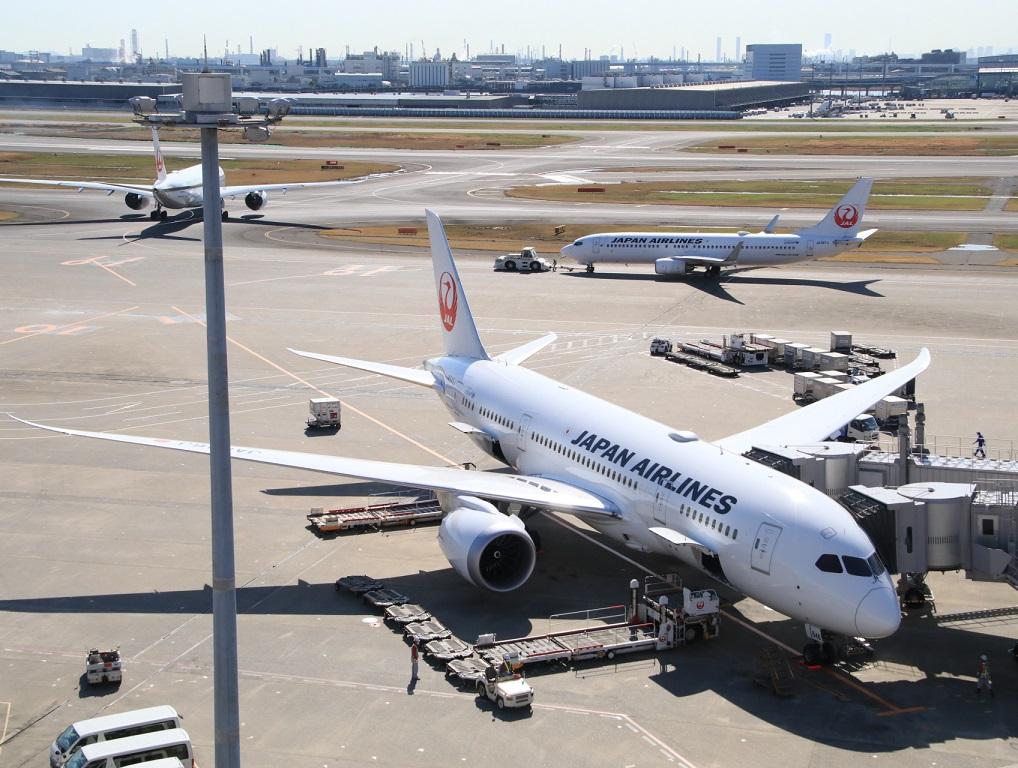 日本航空B787-8(用事があり)3月11日_d0202264_8855.jpg