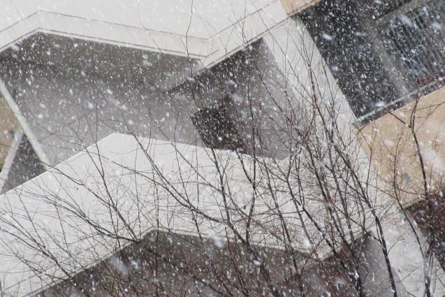 季節外れの雪_e0101819_23141579.jpg
