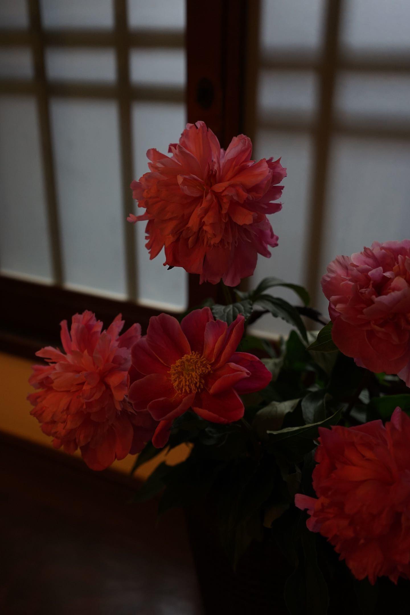 江戸東京たてもの園 38_b0360240_21115308.jpg