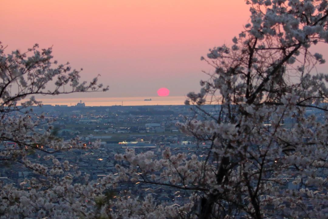 夕焼け桜4/3前編_e0403850_10515701.jpg