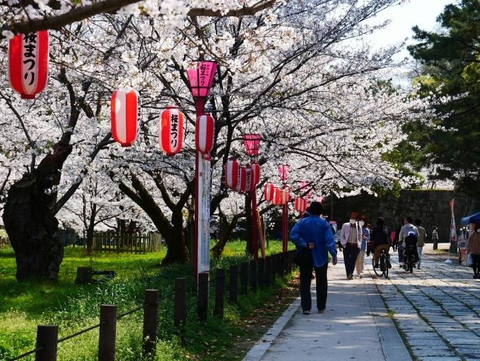 和歌山城公園も花見の宴会禁止  2020-04-07 00:00   _b0093754_23174717.jpg
