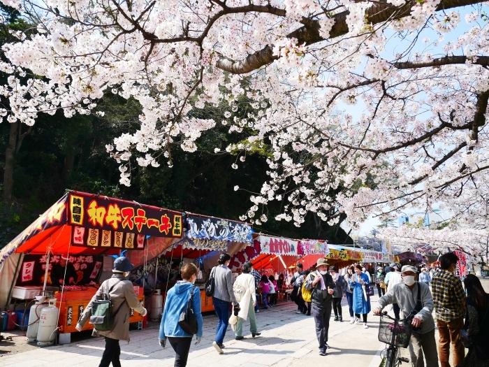 和歌山城公園も花見の宴会禁止  2020-04-07 00:00   _b0093754_23183525.jpg