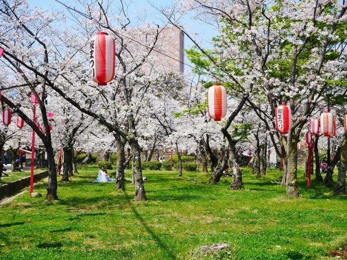 和歌山城公園も花見の宴会禁止  2020-04-07 00:00   _b0093754_23184798.jpg