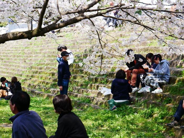 和歌山城公園も花見の宴会禁止  2020-04-07 00:00   _b0093754_23185953.jpg