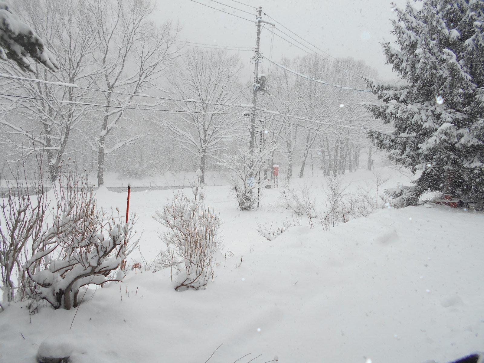 4月6日 月曜日 大雪 0度_f0210811_09062675.jpg