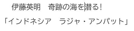 テレビ(4/13):「インドネシア ラジャ・アンパット」伊藤英明 奇跡の海を潜る!@NHK BSプレミアム 4/13 15:15 - 17:15 (再)_a0054926_18004302.jpg
