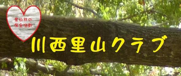 川西里山クラブの新Blog  _d0024426_10152965.jpg