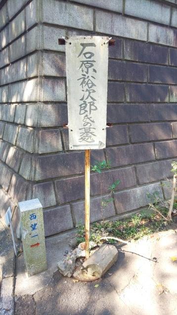 桜と裕次郎_c0124528_16410492.jpg