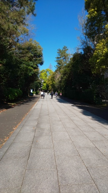 桜と裕次郎_c0124528_16413597.jpg