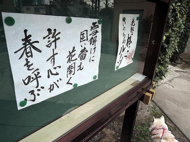 散歩屋日誌【39】 _c0062832_15431128.jpg
