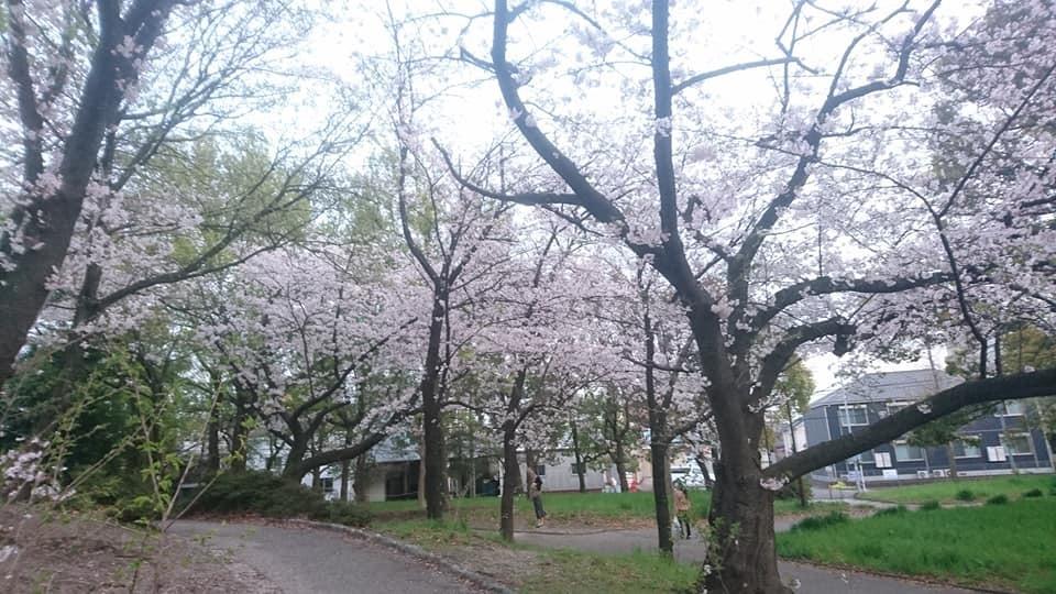 近所をお散歩♪_f0373339_12394960.jpg
