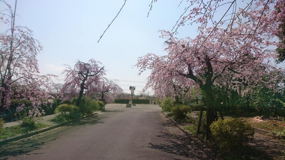 東谷山フルーツパークへ行ってきました!_f0373339_13591110.jpg