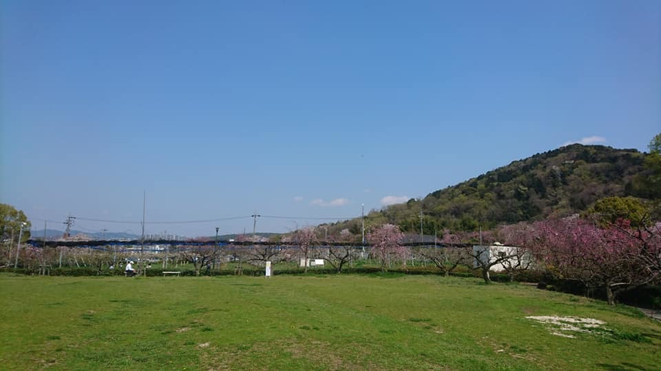 東谷山フルーツパークへ行ってきました!_f0373339_14003335.jpg